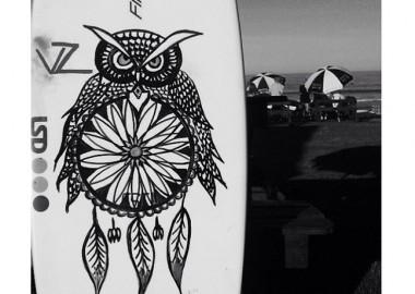 フクロウ。