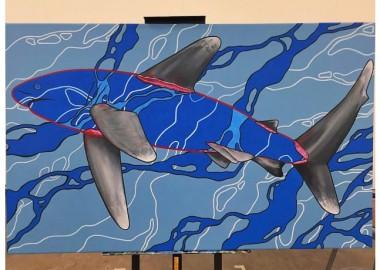 海の中を泳ぐサメ。