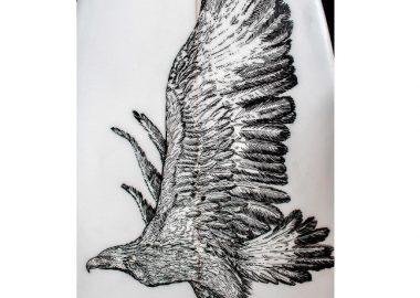 鷹の姿を寄りのショットで。