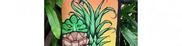 パイナップルの隣の謎の植物が気になります。