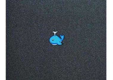 小さな、小さなクジラ。